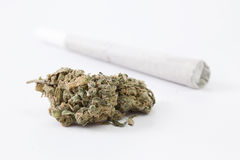 Cannabis & joint. Cannabis white widow on white background with joint Royalty Free Stock Photography