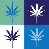 Cannabis leaf Royalty Free Stock Photo