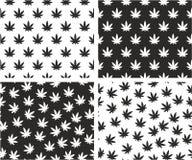 Cannabis Leaf Aligned & Random Seamless Pattern Set Royalty Free Stock Image