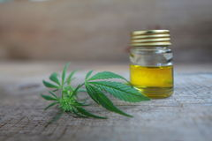 A cannabis leaf and a bottle of hemp oil wooden table Royalty Free Stock Image