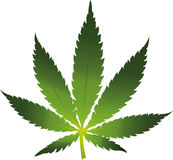 Cannabis leaf icon isolated Royalty Free Stock Photos
