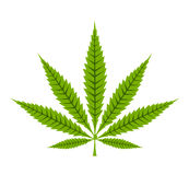 Cannabis leaf icon Stock Images