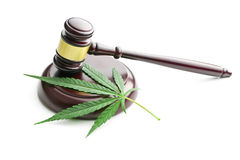Cannabis leaf and judge gavel Royalty Free Stock Photos