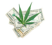 Cannabis leaf and money. The cannabis leaf and money stock photography