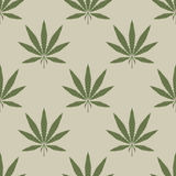 Cannabis leaf seamless background Royalty Free Stock Images