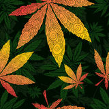 Cannabis leaf  seamless pattern Royalty Free Stock Photos