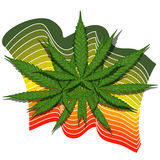 Cannabis leaf with stripes Stock Photos