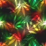 Cannabis leafs on blur rastafarian background. Royalty Free Stock Photo