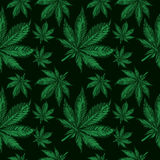 Cannabis leafs seamless  pattern Stock Images