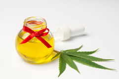 Cannabis leaves and oil on white Royalty Free Stock Images