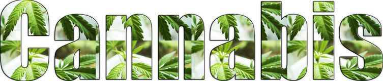 Cannabis Logo With Marijuana Leaves Inside Lettering With White Background. High Quality royalty free stock photos