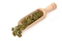 Cannabis médical Photo stock