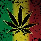 Cannabis-marihuana Stock Afbeeldingen