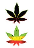 Cannabis and marijuana color symbol design  Stock Photo