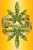 Cannabis marijuana ganja green leaf design advertising graphic Royalty Free Stock Image
