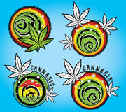 Cannabis and marijuana grunge symbol design  Stock Photos