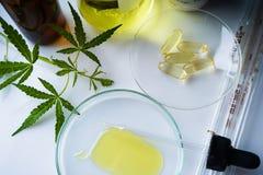 Cannabis marijuana, hampaolja ?r en medicin royaltyfri fotografi