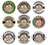 Cannabis marijuana happy smiling rastafarian guy  illustration Stock Photos