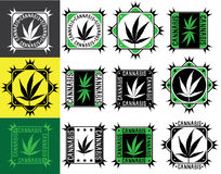 Cannabis marijuana leaf design stamp Stock Photography