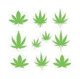 Cannabis marijuana leaf icon  illustration. Royalty Free Stock Photos