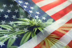 Cannabis Nation With American Flag With Marijuana Plant stock images
