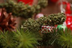 Oil cannabis in a bottle and hemp on a christmas background royalty free stock images