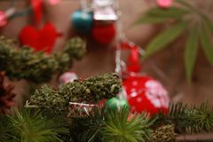 Oil cannabis in a bottle and hemp on a christmas background stock photo