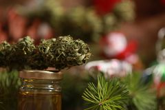 Oil cannabis in a bottle and hemp on a christmas background stock photography