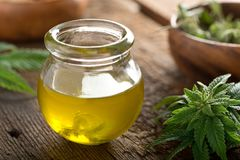 Cannabis Oil. Delicious homemade cannabis oil with marijuana buds and leaf stock image