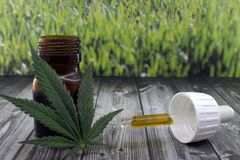 Cannabis oil extract to soothe pains. Cannabis oil extract in bottle to soothe pains royalty free stock images