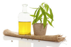 Cannabis oil. Royalty Free Stock Image
