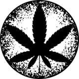 Cannabis ou marijuana na folha preto e branco inscreida em um círculo e em um envelhecido para seu projeto, logotipo, ícone, ilus ilustração do vetor