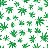 Cannabis pattern. Vector seamless pattern of cannabis leaf Stock Image