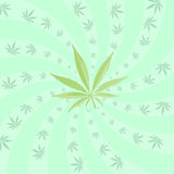 Cannabis pattern Royalty Free Stock Photos