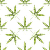 Cannabis  pattern. Stock Images