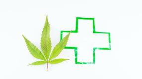 Cannabis plant and medical sign. Royalty Free Stock Images