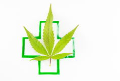 Cannabis plant and medical sign. Royalty Free Stock Photography