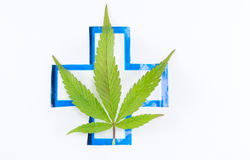 Cannabis plant and medical sign. Stock Image