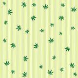 Cannabis rain stock image