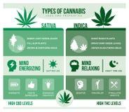 Cannabis sativa e benefícios de saúde indica do cannabis ilustração stock
