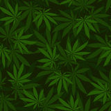 Cannabis seamless pattern Stock Image