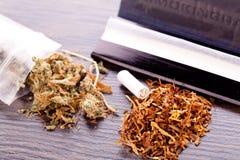 Cannabis secado no papel de rolamento com filtro Foto de Stock