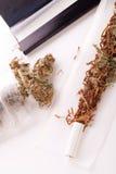 Cannabis secado no papel de rolamento com filtro Imagens de Stock Royalty Free
