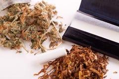 Cannabis secado no papel de rolamento com filtro Fotos de Stock Royalty Free