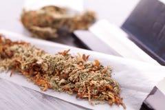 Cannabis secado no papel de rolamento com filtro Imagem de Stock