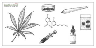 Cannabis Vecctor Set hand drawing. Cannabis Vector Set hand drawing isolated on white background Stock Image