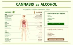 Cannabis vs alkoholhorisontalinfographic stock illustrationer