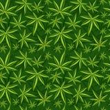 Cannabis, weed, marijuana leaves vector seamless pattern Royalty Free Stock Photos