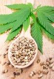 Cannabisblad en zaden op houten lijst Sluit omhoog stock afbeeldingen