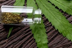 Cannabisdrugs, Analyse van Cannabis in laboratorium royalty-vrije stock afbeelding